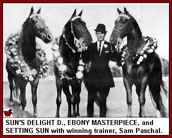 Setting Sun, Ebony Masterpiece and Sun's Delight D.