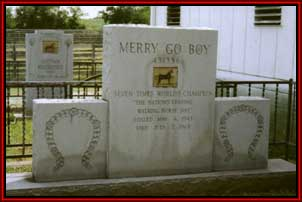 Merry Go Boy rests on the property of S. W. Beech Stables in Tennessee.