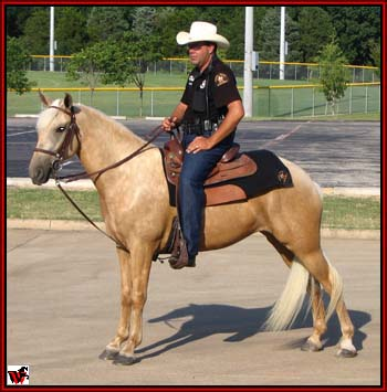 Bum's Warrior daughter, Cassie and her owner, Nic Bristow of the Desoto, Tx. police force.
