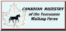 Tennessee Walking Horses - CLICK HERE for Canadian Tennessee Walking Horse Registry