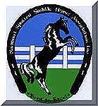 Tennessee Walking Horses - CLICK HERE for National Spotted Saddle Horse Assoc.